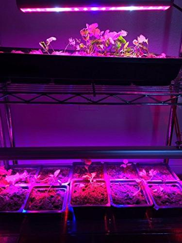 LED Waterproof 45 Growing Light with Spectrum for by