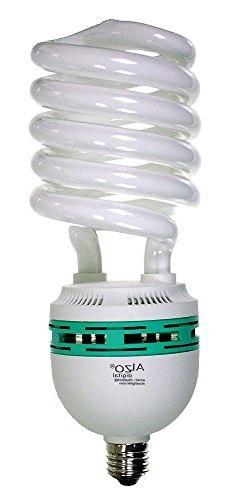 ALZO 85W Joyous Light Full Spectrum CFL Light Bulb 5500K, 42