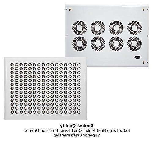 K5 - Best LED Grow Kind LED