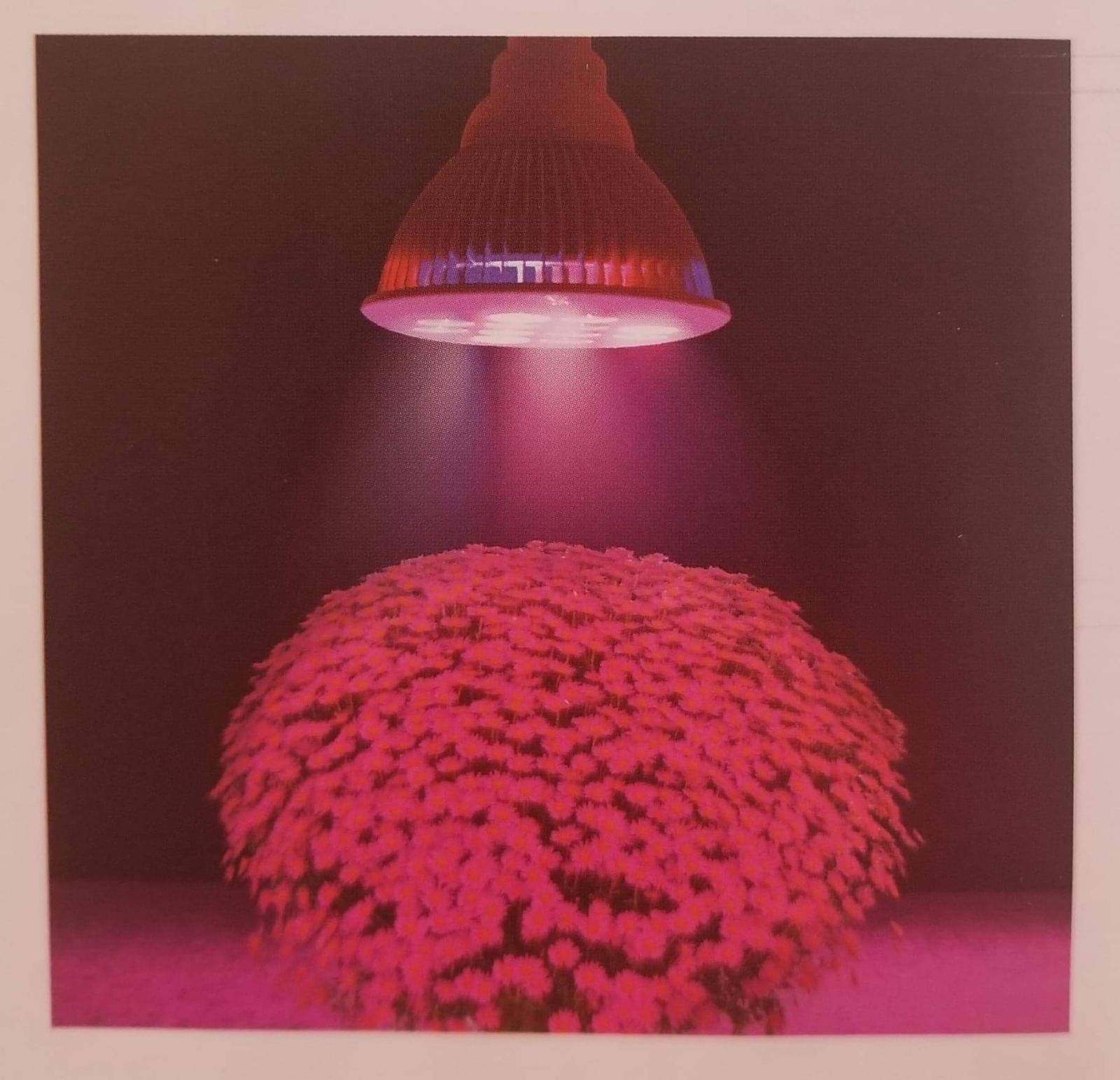 TaoTronics LED Plant Grow Red & Blue Light 12w