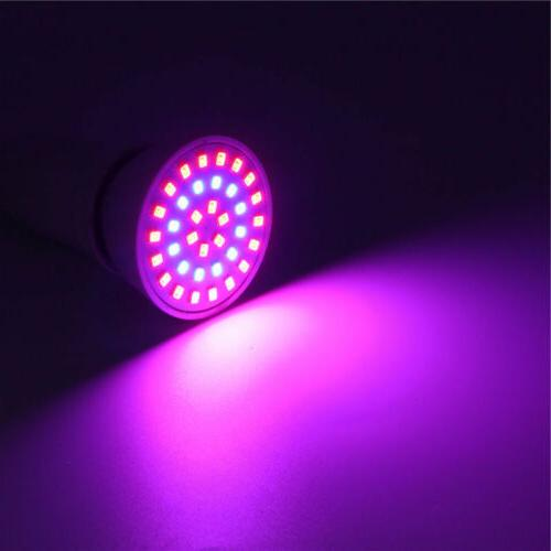 LED Bulb Grow E27 8W 10W 2835 SMD Flower