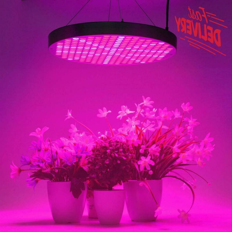 Led Grow Shengsite 50W Grow Lights For Indoor Plants 250 Leds
