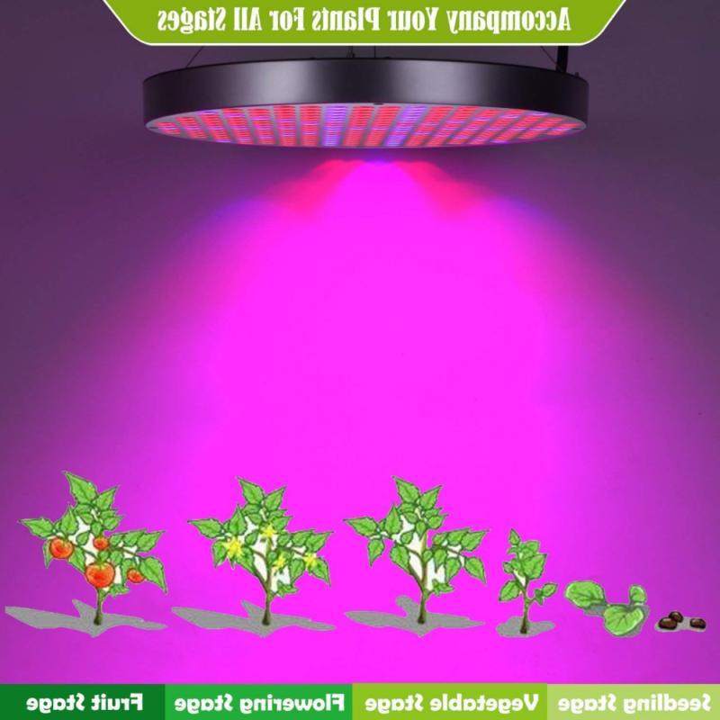 Led Light, Shengsite 50W for Plants Full
