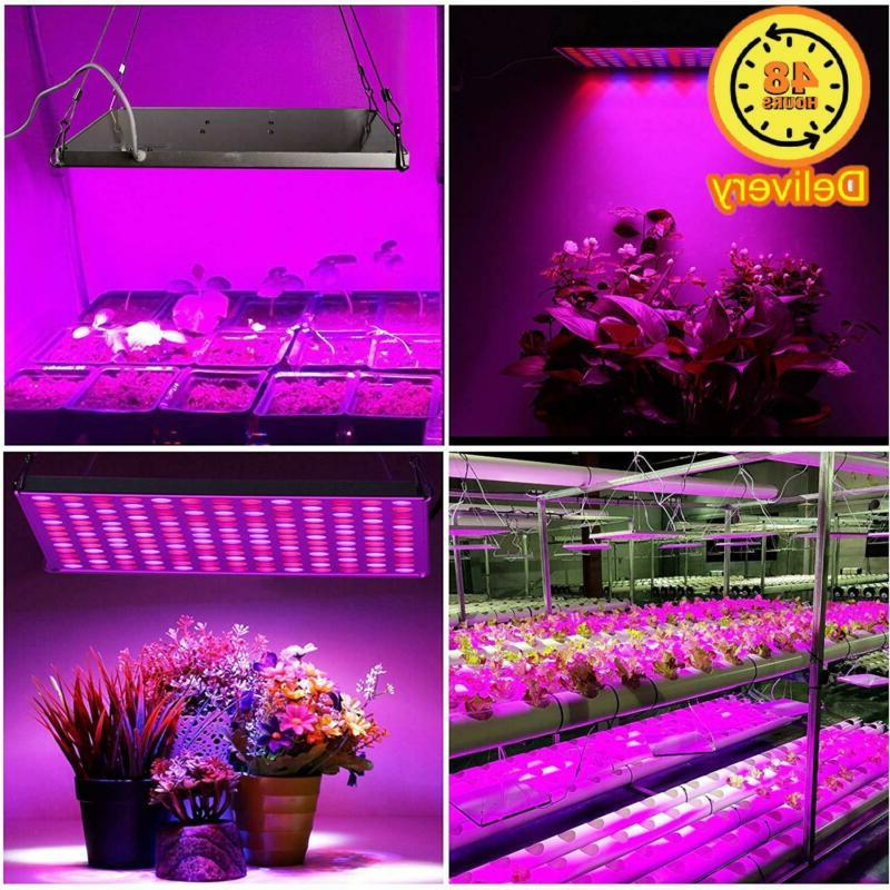 Roleadro LED 75w Growing Grow Lamps RedBlue