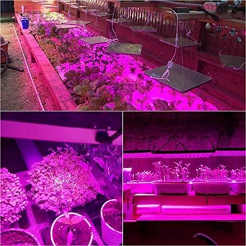 Lightimetunnel LED Grow 75W Upgraded Full Spectrum Red Blue