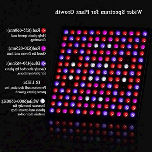 Lightimetunnel 75W Upgraded Full Spectrum Red