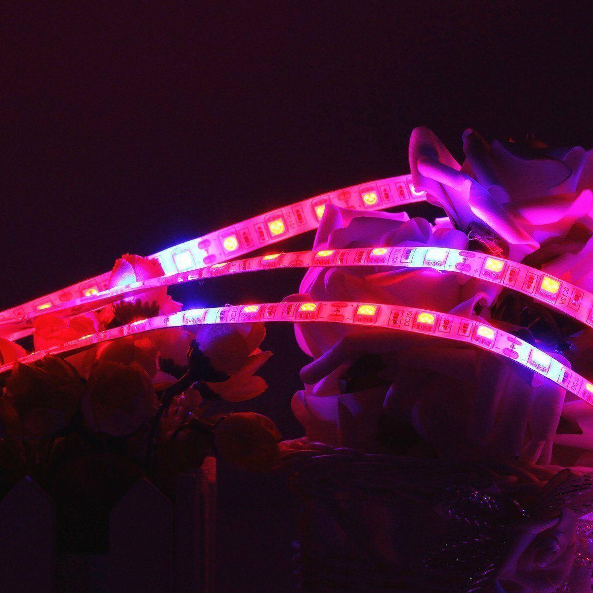 Full Spectrum LED Grow Light strip Lamp Blue Red For Hydropo