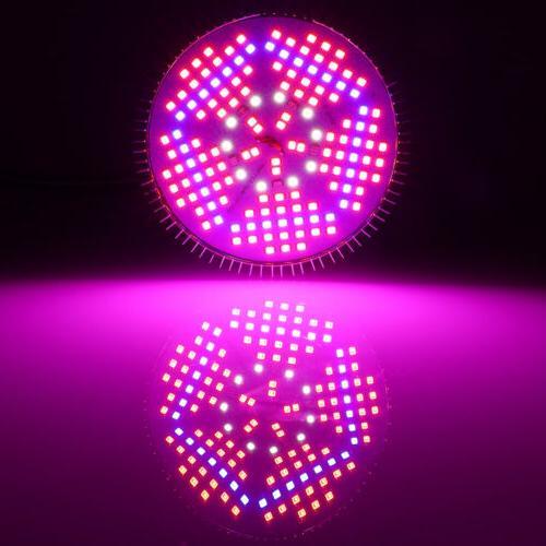 100W E27 Light Bulb for Bloom Hydroponics