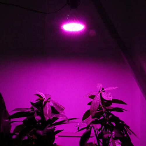 100W LED Light Bulb for Flower Hydroponics US