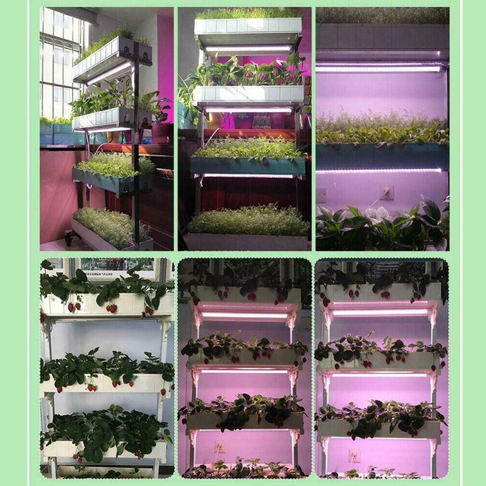 Led Grow Light Tube Plant