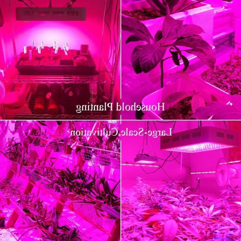 Roleadro LED Galaxyhydro 300W Plant Spectrum