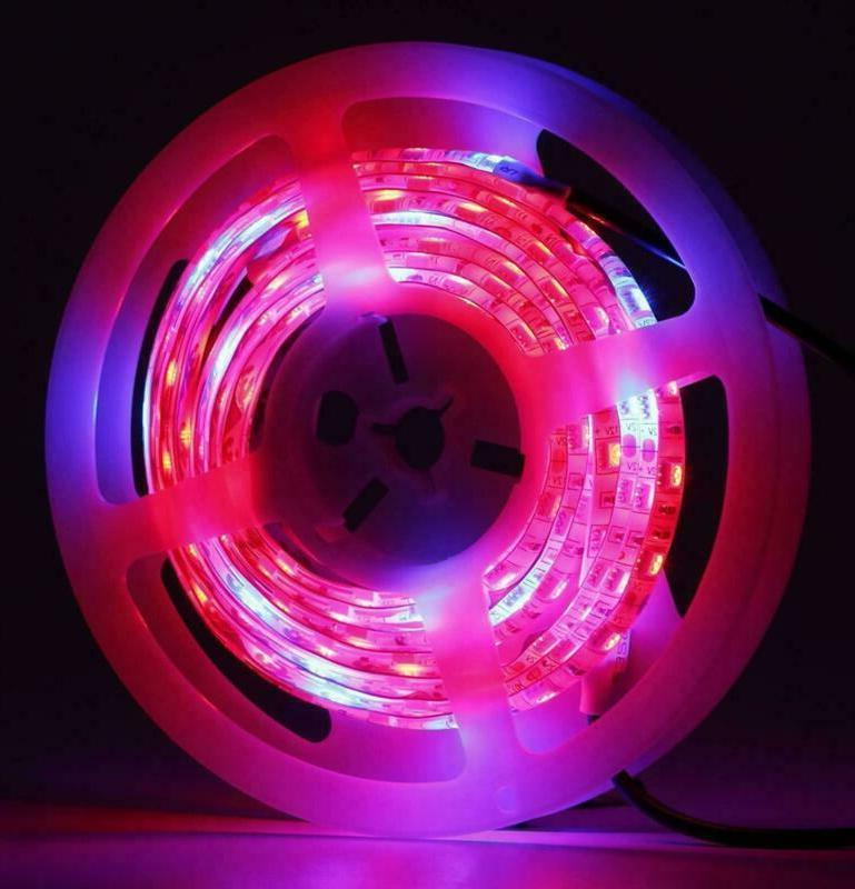 Led Grow 3.2Ft 5050 Soft For Pla