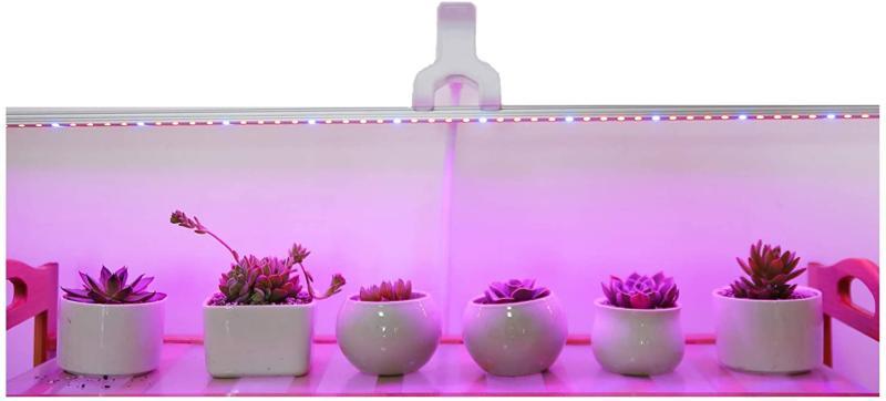 succulent cactus waterproof led strip plant growing