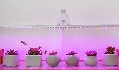 led grow light ledy 3 2ft 5050