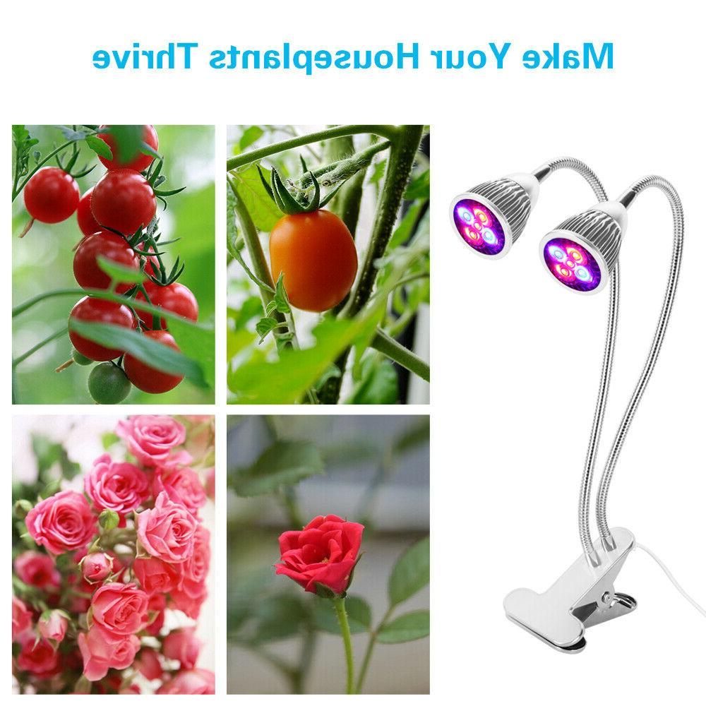 Morsen LED Plant Lamp with Clip Indoor Plants