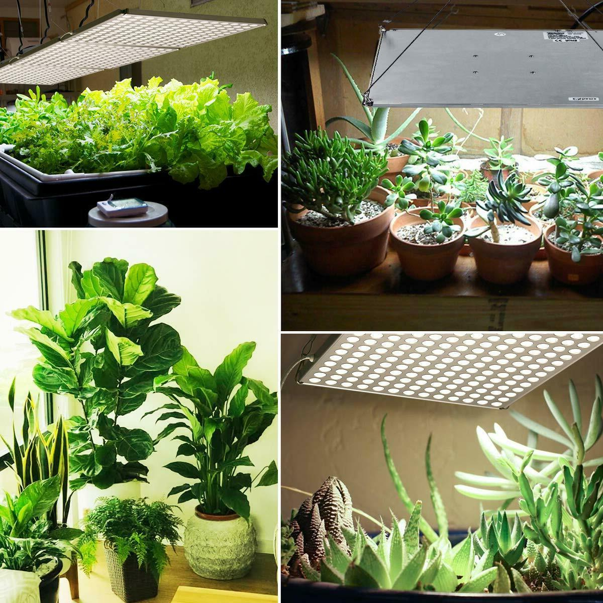 LED Grow Light, Light Plants, 3500k