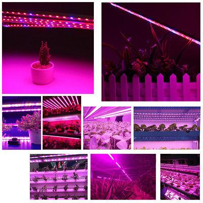 Lamp Spectrum For Hydroponic Plant
