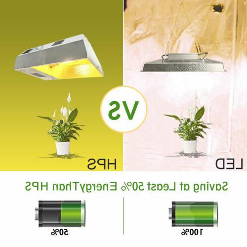 Mars 1000W 2000W 3000W Grow Tent for Veg