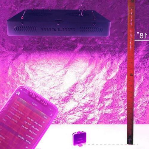 Phlizon Plant Grow Thermometer Humidity...