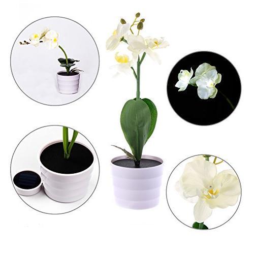 Awakingdemi LED Orchid Flower , Operated Orchid Light,Solar 3 LED Light for Garden Outdoor Dec
