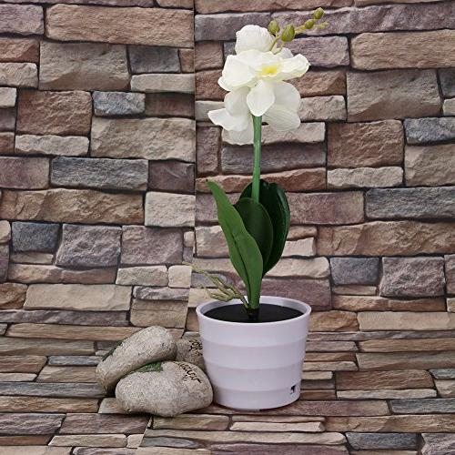 Awakingdemi , Battery Operated Orchid Light,Solar Power LED Orchid for Garden Outdoor Dec