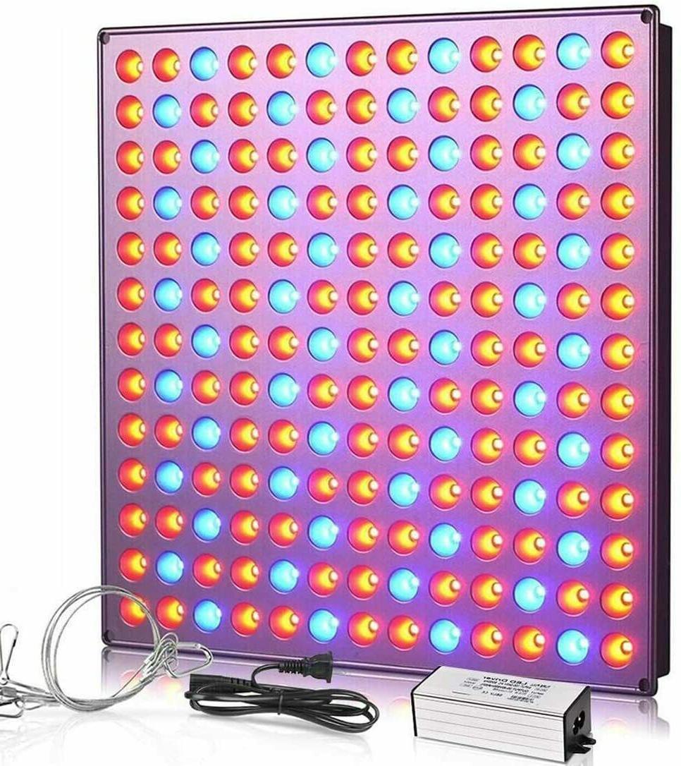 panel growing light bulbs grow