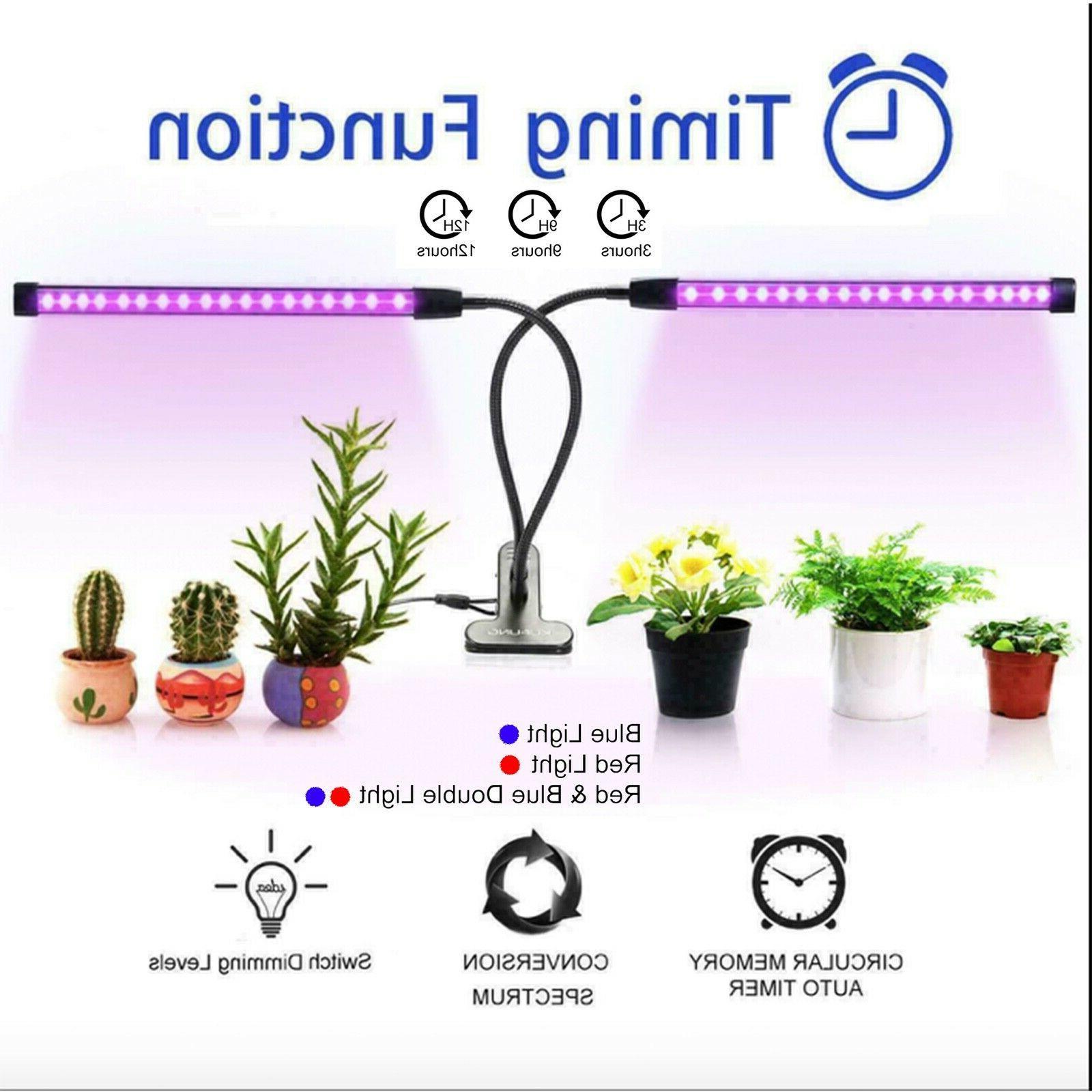 Plant Dual Hydroponics