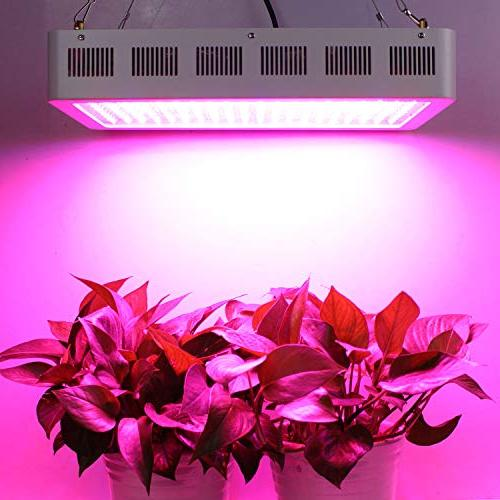 2000W Full with Uv&Ir for Indoor Greenhouse Veg & Flower
