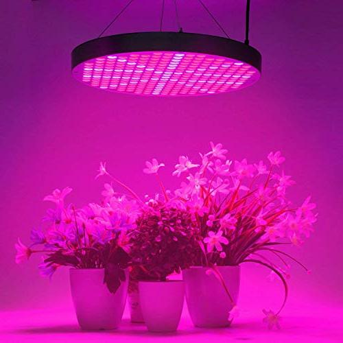 50W LED Plant Grow LEDs Plants Lamp Bulbs with Blue Spectrum Plant Hanging Kit