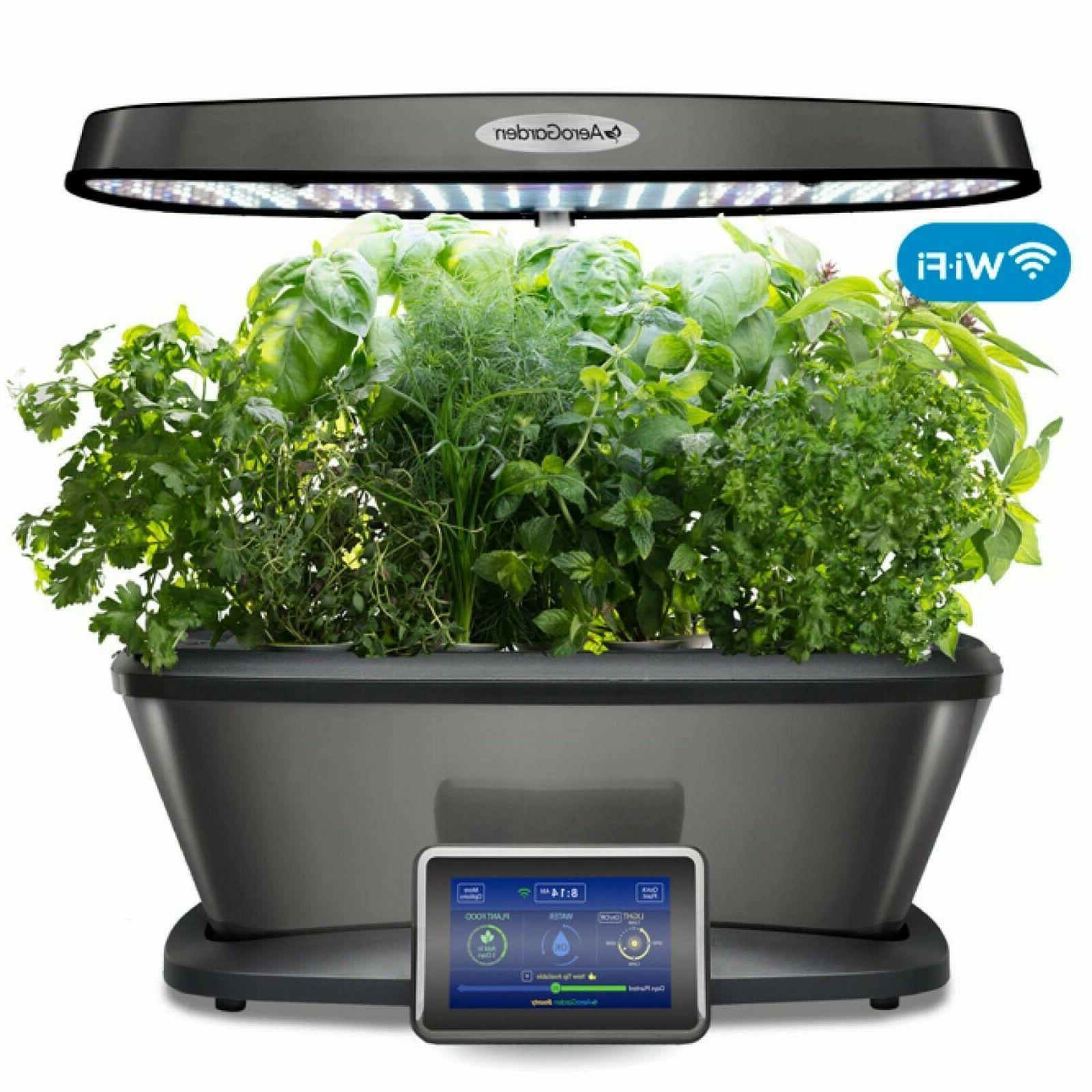 seed pod kit gourmet herb