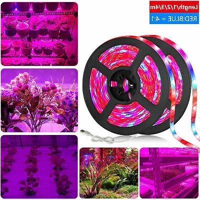 smd 5050 led strip grow light lamp