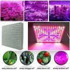 500W Full Spectrum 2835 LED Grow Light Panel For Plant Veg M