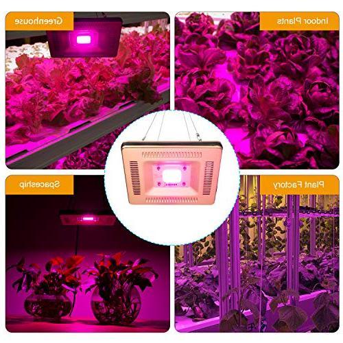 FECiDA Waterproof LED Grow Lights, 50W COB LED Grow 300W Grow Bulbs Full Spectrum Grow for Indoor Plants, and Lightweight for Tent