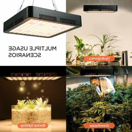 Thermometer Plant Grow Light Indoor Veg