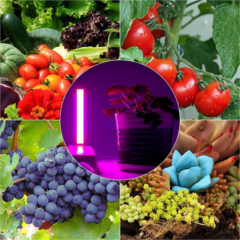 USB Full Spectrum DC Greenhouse Lighting <font><b>Growing</b></font> Phyto