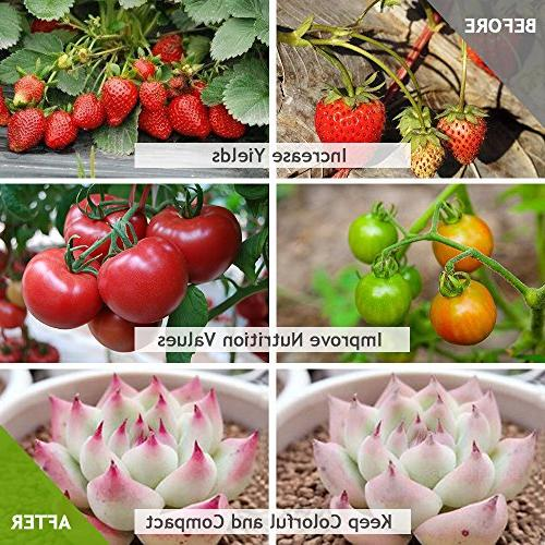 Waterproof IP67 Grow New Technology Light, Natural Heat Dissipation Without for Indoor and Hydroponics