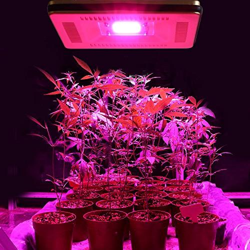 Waterproof IP67 Grow New Cob Light, Natural Without All for Plants, Greenhouse and