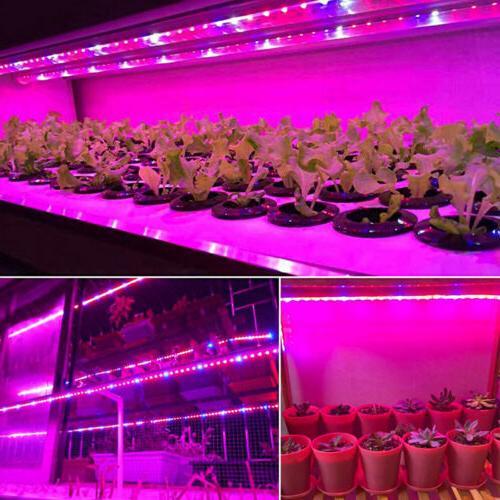 Waterproof LED Grow Strip Spectrum Indoor Veg