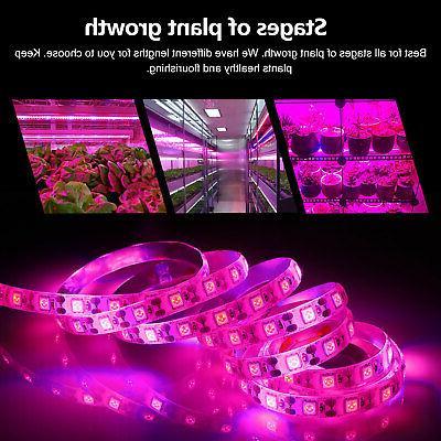 Waterproof LED Strip for Flower