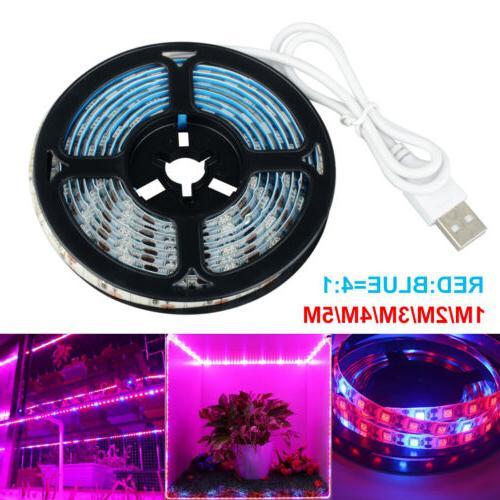 Waterproof LED Strip Indoor Basement Veg