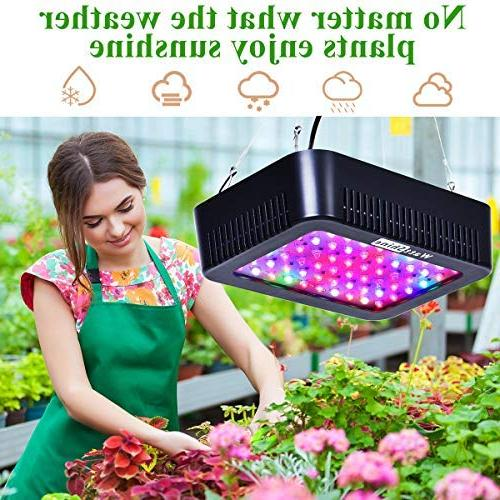 WattShine LED Grow – 300W Lighting, Full Light Plant Light Grow Lamp UV&IR Plant Greenhouse and Indoor Grow LED Vegetables
