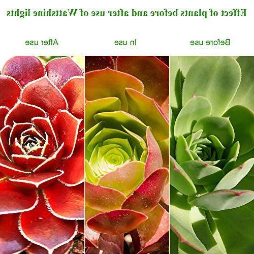 Full Spectrum Grow Plant UV&IR Greenhouse Grow Vegetables