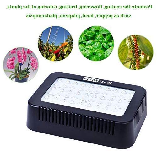 WattShine LED – 300W Growing Plant Grow Lamp UV&IR Plant Greenhouse Grow Vegetables