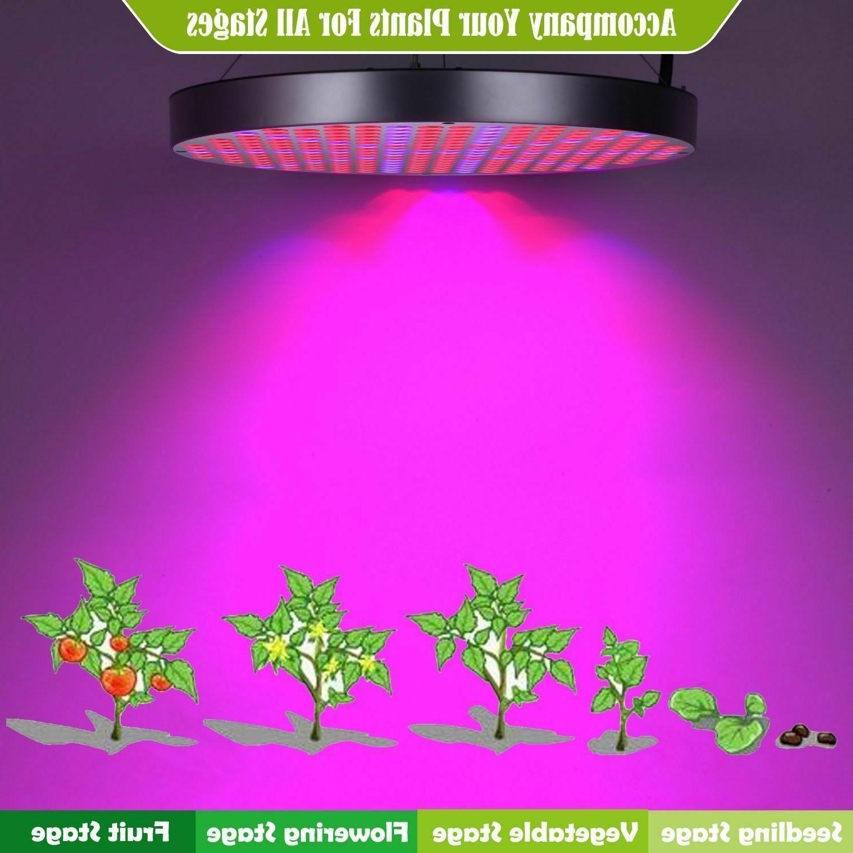 Weed Light Medical Growing