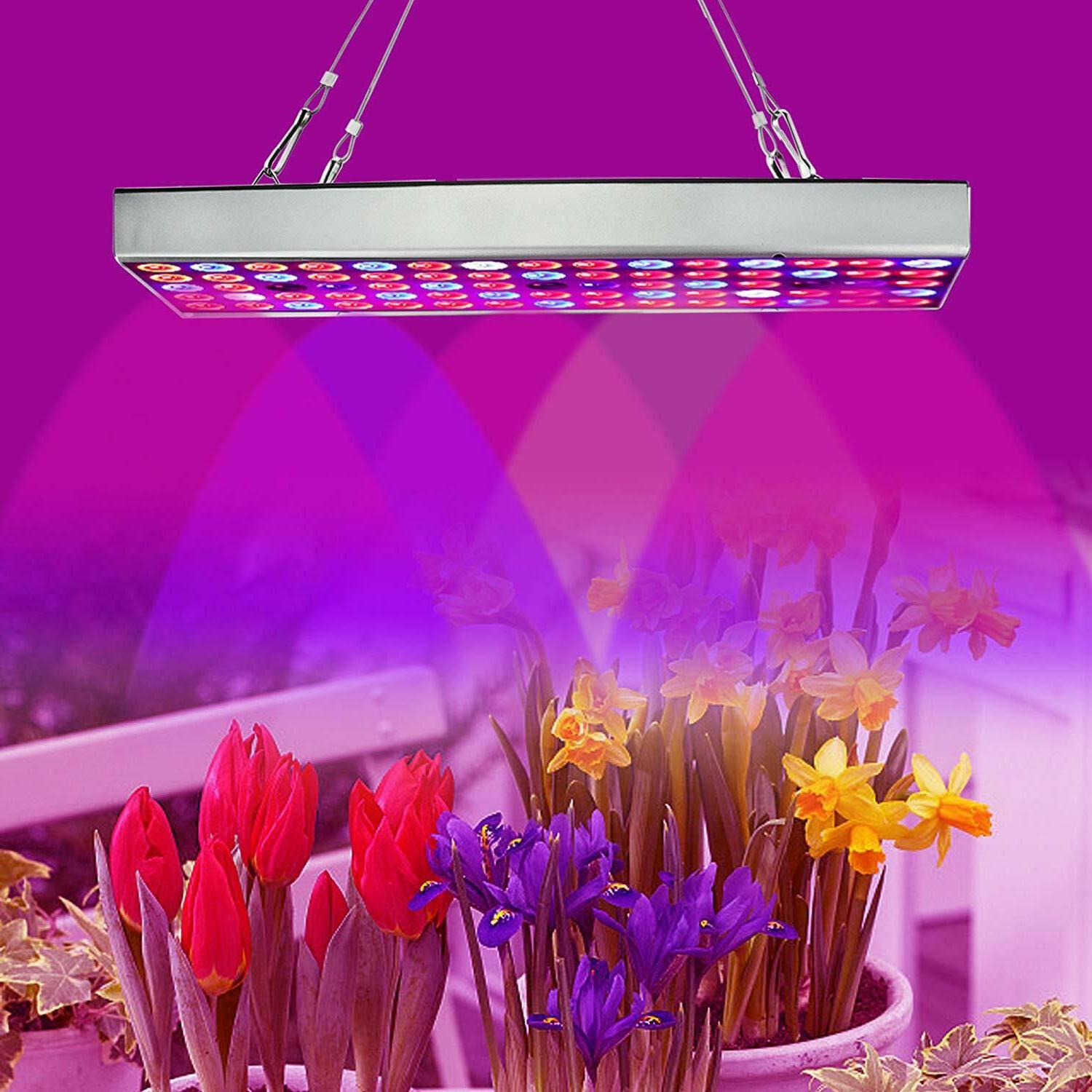 Weed Light Medical LED Hydroponic Lamp Indoor For Growing Plant