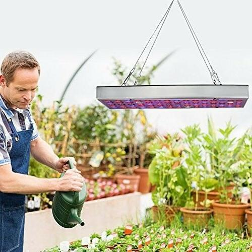 Weed Grow LED Hydroponic For Plant