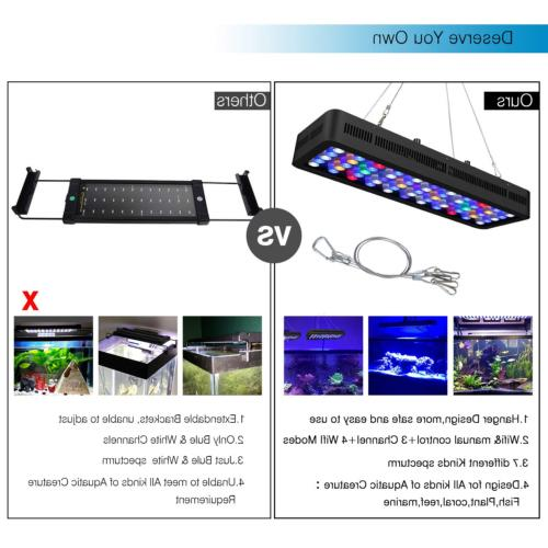 Lightimetunnel Light, WiFi + Dimmable Fish Tank Full
