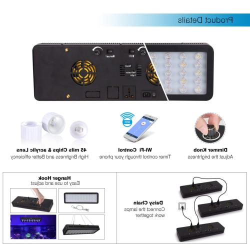 Lightimetunnel LED Light, WiFi Dimmable Fish Full