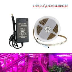 LED Plant Grow Strip Light 12V 5050 300LED16FT Full Spectrum