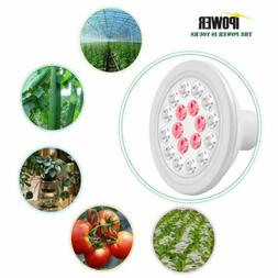 iPower 24-Watt Multi-Spectrum Waterproof LED Grow Light Bulb